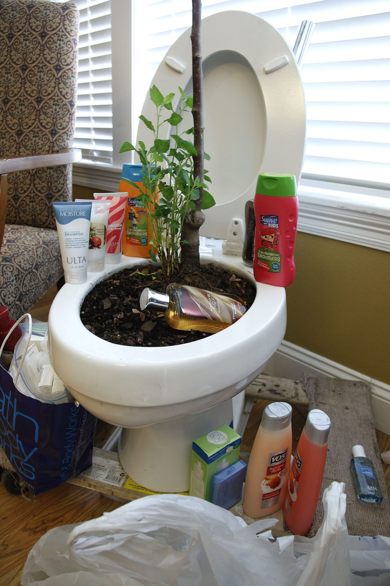 Honors House uses 'toilet-tree' for donations | The Bison